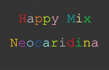 Set 10 x Happy Mix Neocaridina Garnelen